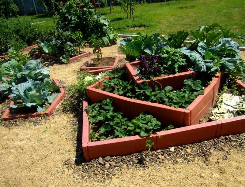 Что такое высокая овощная грядка