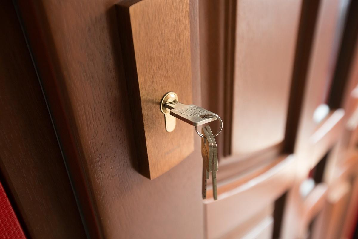 Салва противоугонная дверь