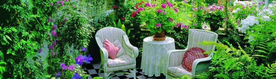 Зимний сад – идеи и воплощения