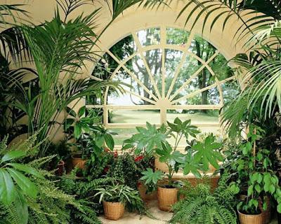 Зимние сады в доме или квартире