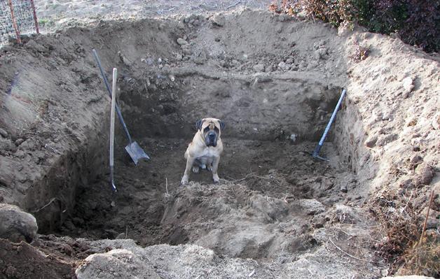 Как выкопать и построить надежный погреб