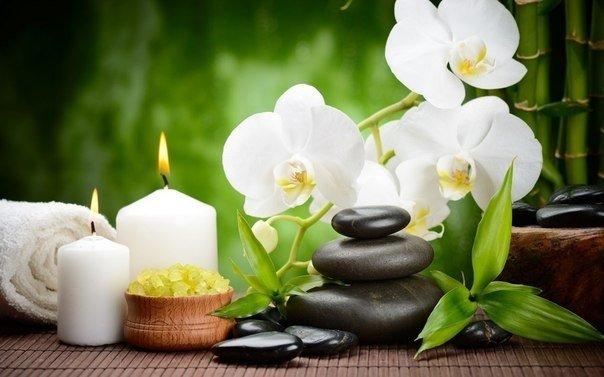 Бытует мнение, что орхидея — энергетический вампир…
